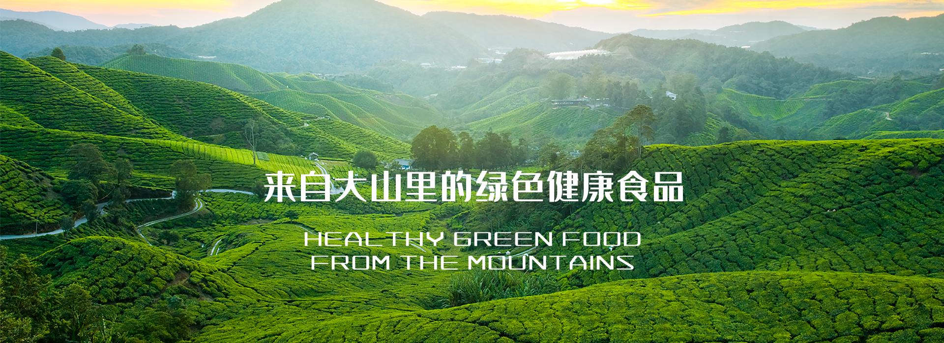 神农集团,神农本草,神农本草农业集团
